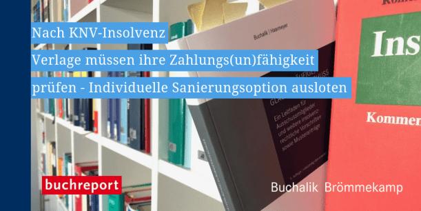 Buchreport ESUG