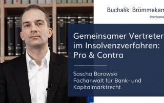 Gemeinsamer Vertreter im Insolvenzverfahren: Pro und Contra